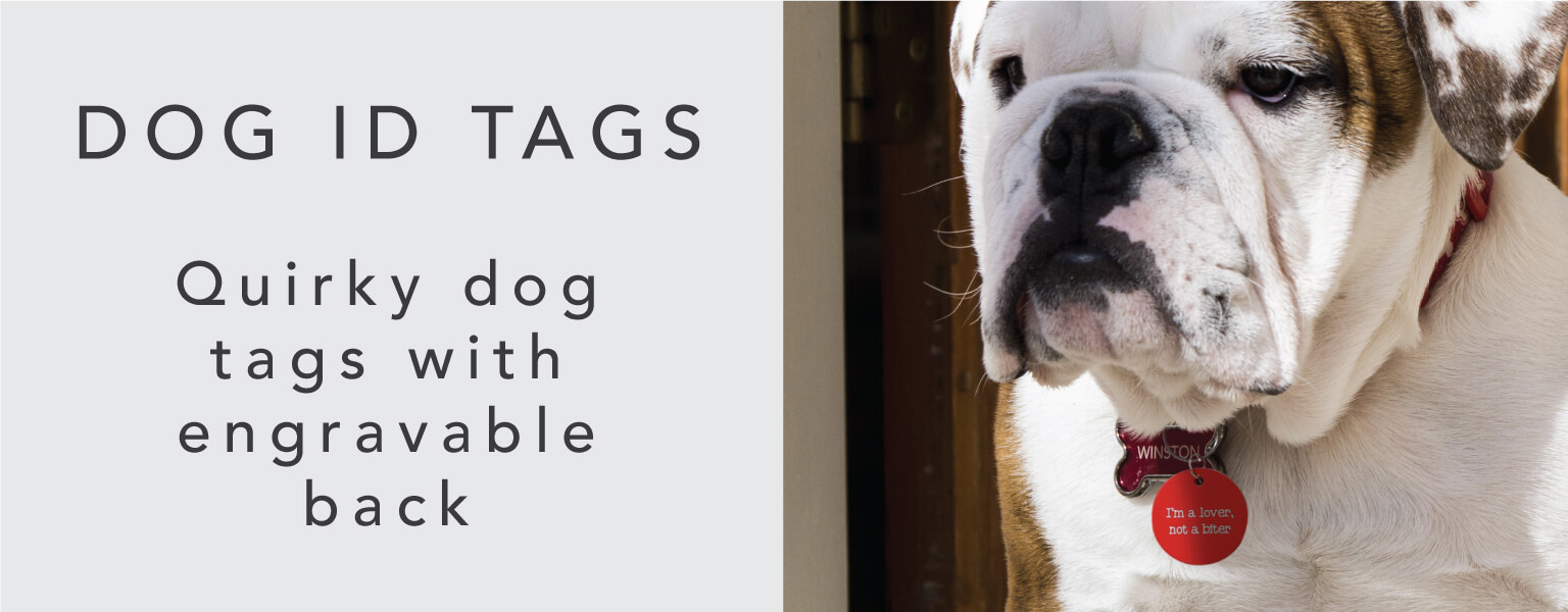 Shop our Dog ID Tags collection!