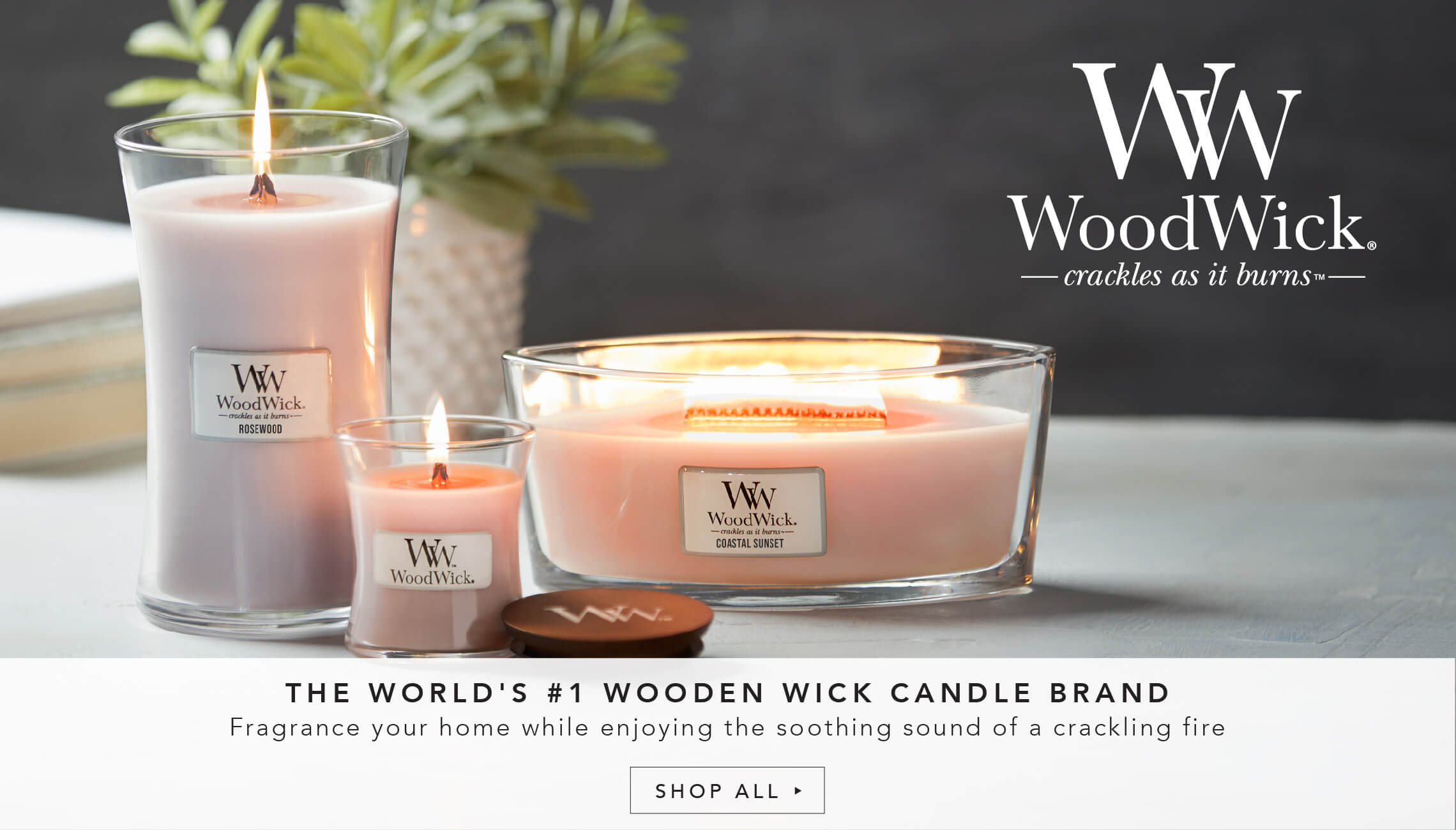 The world's #1 wooden wick candle brand